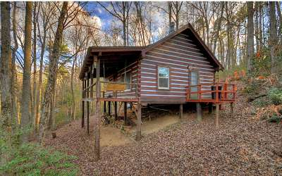 Fannin County Single Family Home For Sale: 174 Icy Lane