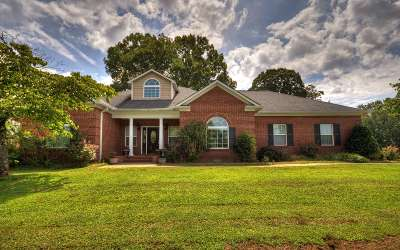 Ellijay Single Family Home For Sale: 700 The Oaks Dr