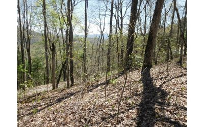 Hayesville NC Residential Lots & Land For Sale: $32,900