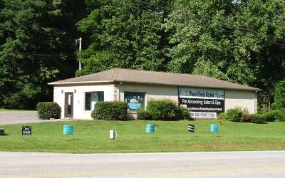 Hiawassee Commercial For Sale: 2485 Us Highway 76 West