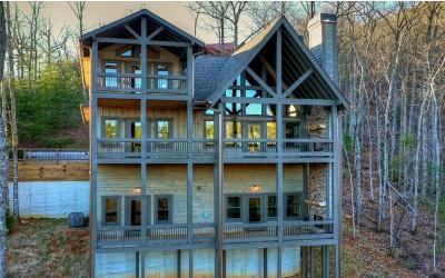 Blue Ridge Single Family Home For Sale: 476 Geronimo Road