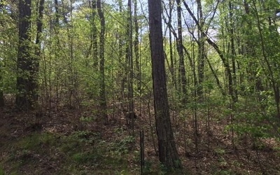 Jasper Residential Lots & Land For Sale: .44 Indian Forest Road