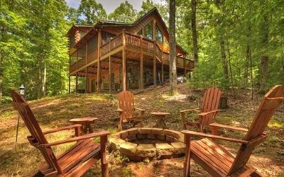Blue Ridge Single Family Home For Sale: 599 Mountain Lake Circle