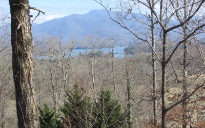 Hayesville Residential Lots & Land For Sale: 326 Chatuge Shores Cir.