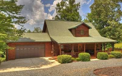 Blue Ridge Single Family Home For Sale: 316 Johns Ridge Rd