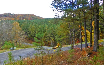 Ellijay Residential Lots & Land For Sale: Lot 1 Black Bear Ridge