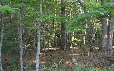 Brasstown Residential Lots & Land For Sale: 1103 Wells Road