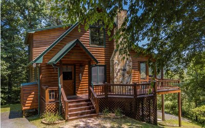 Blue Ridge Single Family Home For Sale: 319 South Dream Catcher
