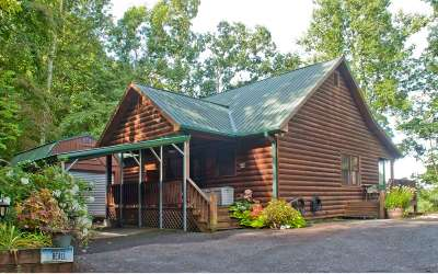 Hiawassee Single Family Home For Sale: 310 Barefoot Hill Road