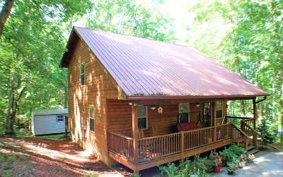 Hayesville Single Family Home For Sale: 481 Watters Rd