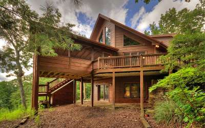 Blue Ridge Single Family Home For Sale: 71 Tall Timber Mtn Way