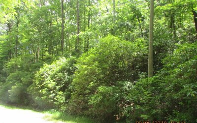 Residential Lots & Land For Sale: C135 Park Drive
