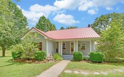 Blue Ridge Single Family Home For Sale: 525 Dial Road