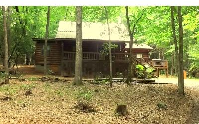 Blue Ridge Single Family Home For Sale: 1014 Joann Sisson Rd