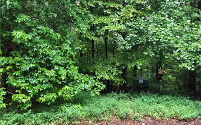 Ellijay Residential Lots & Land For Sale: 372 Emerald Springs Lane