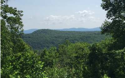 Ellijay Residential Lots & Land For Sale: Lt194 Andes Ridge Dr