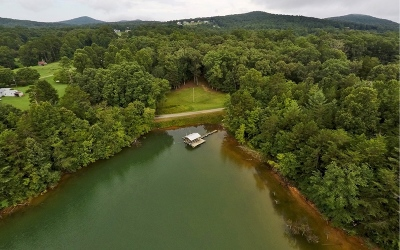 Blairsville Single Family Home For Sale: 676 Lake Cove Lodge Rd.