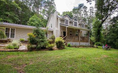 Blue Ridge Single Family Home For Sale: 351 Cops Road