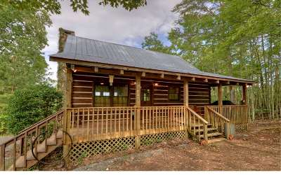 Blue Ridge Single Family Home For Sale: 490 Mountain Ridge Road