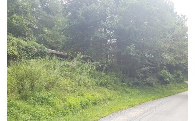 Ellijay Residential Lots & Land For Sale: Cartecay Cove Lane