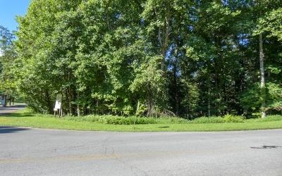 Ellijay Residential Lots & Land For Sale: 1.53 Cherokee Drive