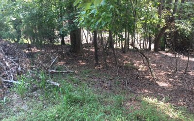 Ellijay Residential Lots & Land For Sale: Primrose Ct Bf 596