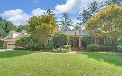 Blairsville Single Family Home For Sale: 220 River Trace