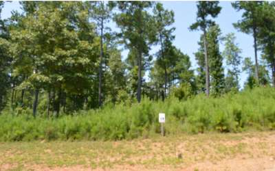 Blairsville Residential Lots & Land For Sale: North Shore Lot 128