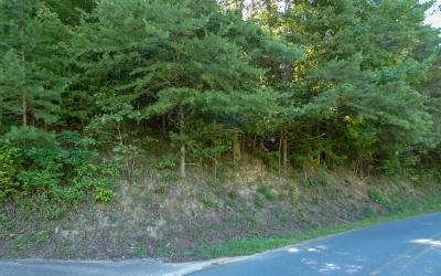 Ellijay Residential Lots & Land For Sale: Lt 13 Cherokee Dr