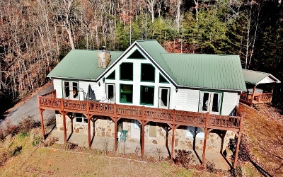 Towns County Single Family Home For Sale: 204 Rolling Acres