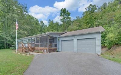 Hiawassee Single Family Home For Sale: 2295 Lovingood Road