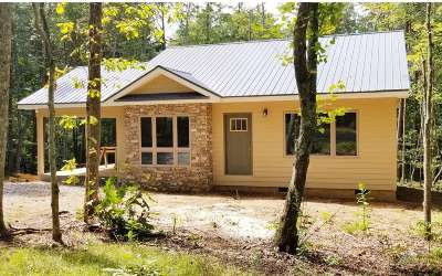 Blairsville Single Family Home For Sale: Lt48 Tinas Court