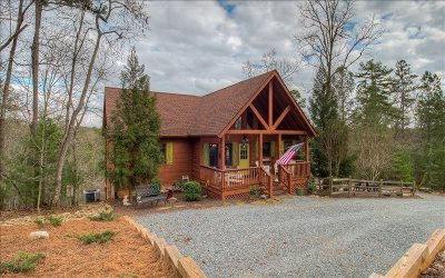 Ellijay Single Family Home For Sale: 120 Crystal Lane
