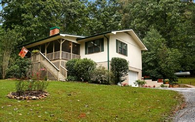 Blairsville Single Family Home For Sale: 522 Forest Circle