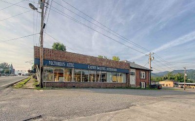 Hiawassee Commercial For Sale: 59 N Main Street