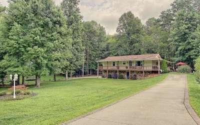 Blairsville Single Family Home For Sale: 1052 Bradley Rd