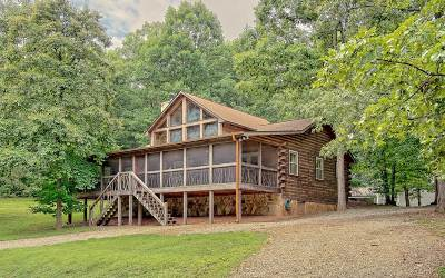 Blairsville Single Family Home For Sale: 494 Notla Vista Ii