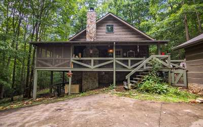 Blue Ridge Single Family Home For Sale: 487 Weeks Creek Rd