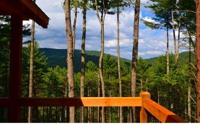 Blue Ridge Single Family Home For Sale: Bell Camp Ridge Rd