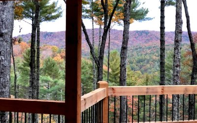 Blue Ridge Single Family Home For Sale: 588 Bell Camp Ridge Rd