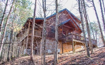 Mineral Bluff Single Family Home For Sale: 39 Hideaway Ridge