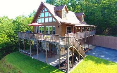 Warne Single Family Home For Sale: 9 Beach Mountain