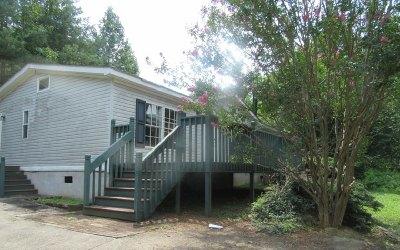 Blue Ridge Single Family Home For Sale: 248 Thrasher Drive