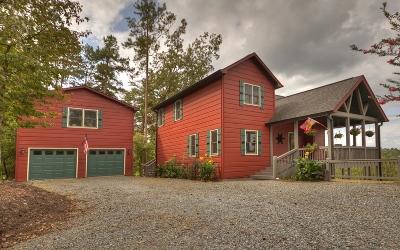 Ellijay Single Family Home For Sale: 280 Palmetto Drive