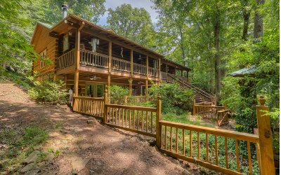 Blue Ridge Single Family Home For Sale: 99 Pine Grove Dr