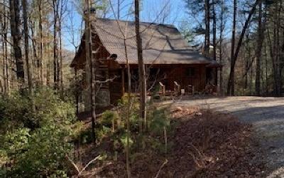 Blue Ridge Single Family Home For Sale: 191 Cozy Valley Lane