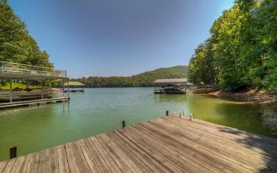 Blairsville Single Family Home For Sale: 100 Lake Vista Drive