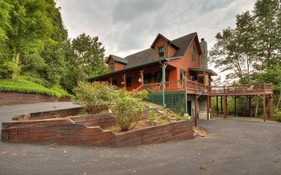 Fannin County Single Family Home For Sale: 10 E Dream Catcher