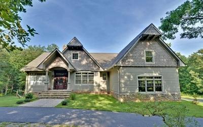 Blairsville Single Family Home For Sale: 78 Forrester Lane