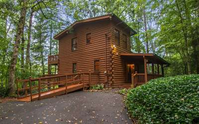 Ellijay Single Family Home For Sale: 4081 Whitepath Road